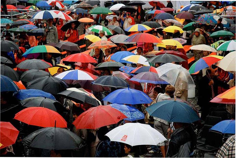 Как выбрать модный женский зонт от дождя